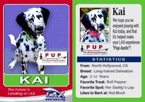 PUP Kai card